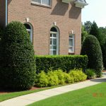 shrubs and brick house