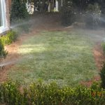 grass being watered