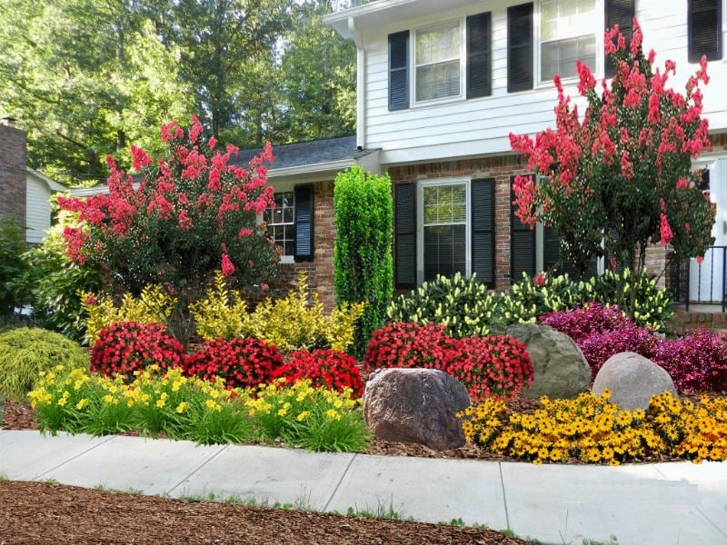 shrubs in front of house