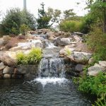 water fall with pond