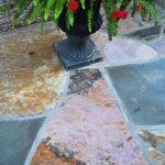 stone floor with plant