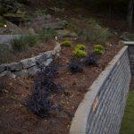brick wall with shrubs